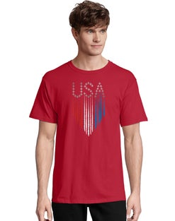 Hanes Men's USA Formation Short Sleeve Graphic Tee
